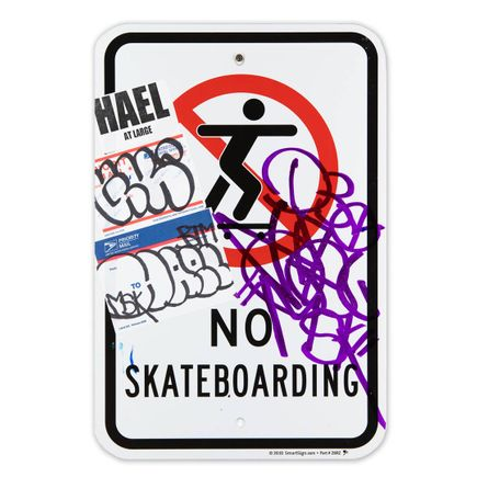 Hael Original Art - No Skateboarding - V - 12 x 18 Inches