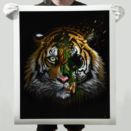Sonny Art Print - Saha - Limited Edition Prints