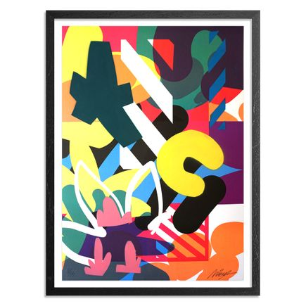 Maser Art - 11 of 15 - Habitats - Hand-Painted Edition
