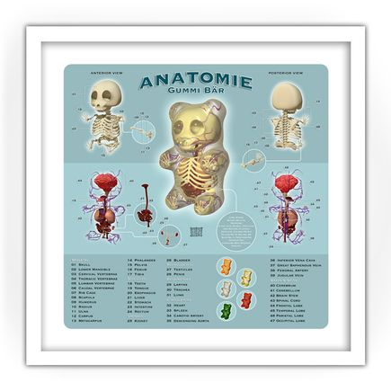 Jason Freeny Art Print - Anatomie
