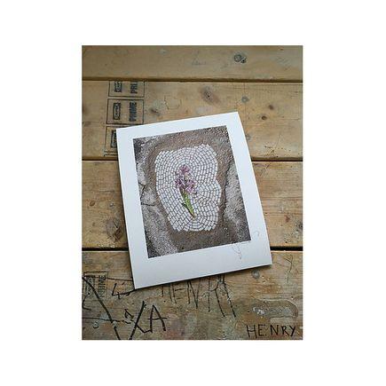 bachor Art Print - Iris - 11 x 14 Inches - Open Edition Prints