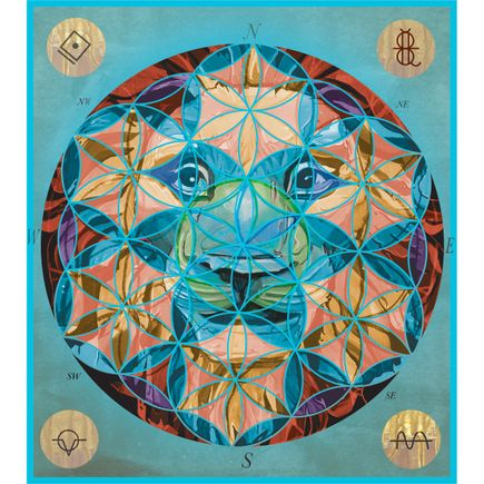 David Foox Art Print - Lionhead Life