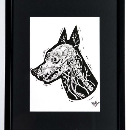 Nychos Original Art - X-Ray of a Doberman - Ink Drawing