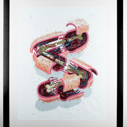 Nychos Original Art - Dissection Of The Letter S
