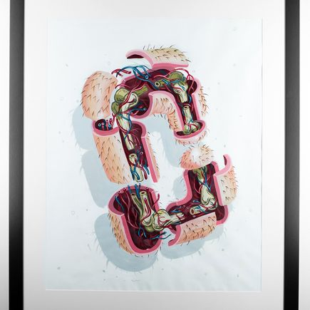 Nychos Original Art - Dissection Of The Letter C