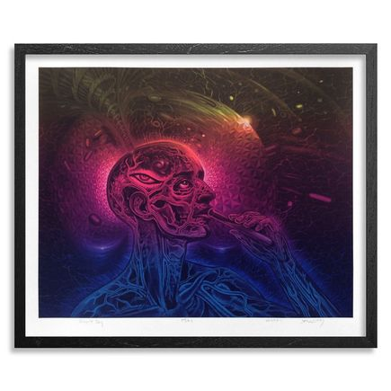 Alex Grey x Mars 1 Art - Bicycle Day