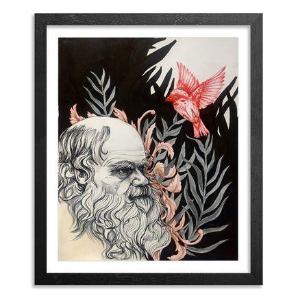 Caroline Caldwell Original Art - Darwin - Original Sketch