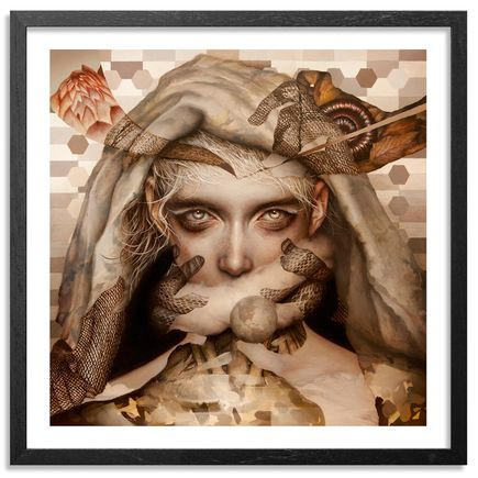 Dan Quintana Art - Nova - Framed