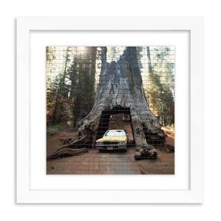Roger Steffens / The Family Acid Art Print - Redwood Garage - Sequoia National Park, October 1988 - Blotter Edition