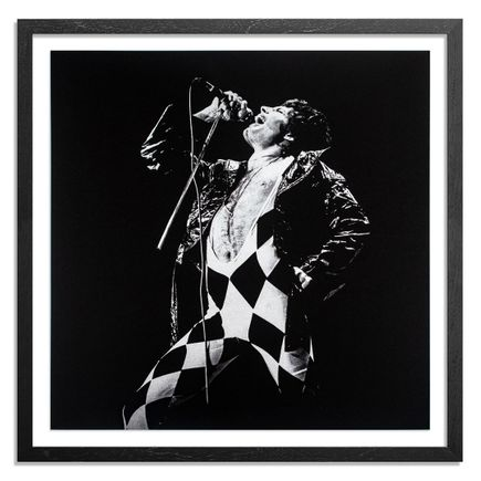 Janet Macoska Art Print - Bohemian Rhapsody - Mono Edition