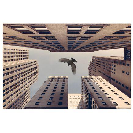 Jeremy Deputat Art Print - Stay Fly - 66 x 44 - Number 6-10