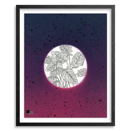 Jonny Alexander Original Art - Studies & Thoughts on Sky and Botanic - 01