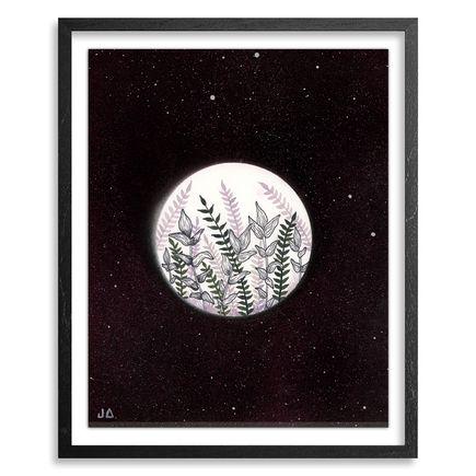 Jonny Alexander Original Art - Studies & Thoughts on Sky and Botanic - 03