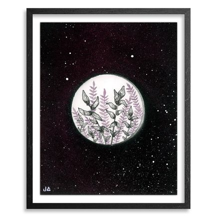 Jonny Alexander Original Art - Studies & Thoughts on Sky and Botanic - 04