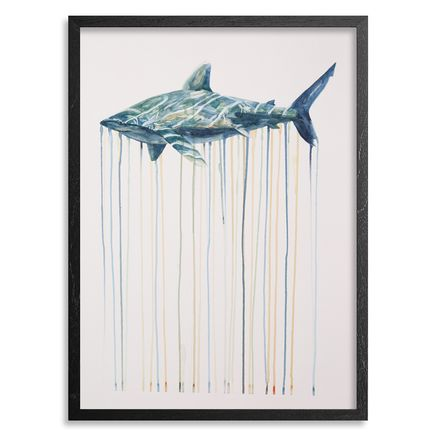 Kai'ili Kaulukukui Original Art - Oceanic Whitetip - Original Artwork