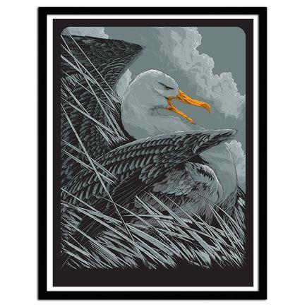 Ken Taylor Art - Albatross
