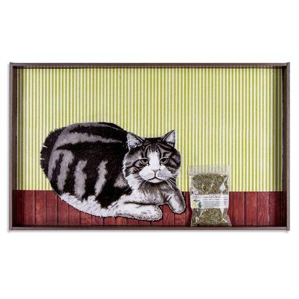 Mary Williams Original Art - Meowjuana