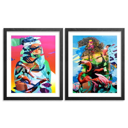 Mwanel Pierre-Louis Art Print - 2-Print Set - Dissect + Flamingo Tropical