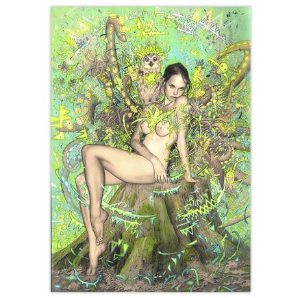 Rodrigo Luff Original Art - Tree Nymph