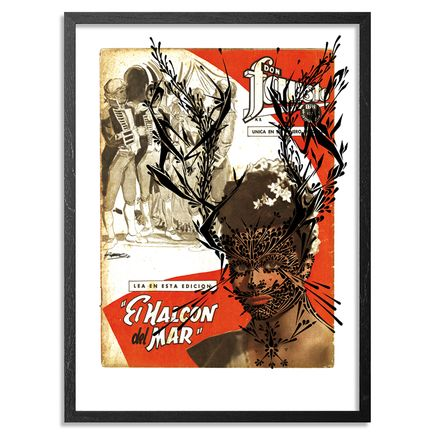 Stinkfish Art - El Halcon del Mar - Black Edition - Framed