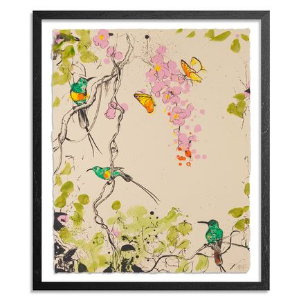 Xenz Art Print - Beautiful Sunbirds - Creme Variant