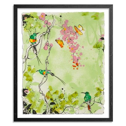 Xenz Art Print - Beautiful Sunbirds - Green Variant